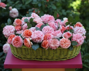 Nature___Flowers_____Flowers_in_a_green_basket_087095_10